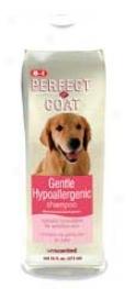Hypo Allergenic Shampoo - 16oz