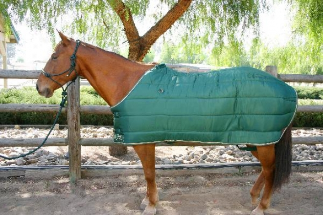Kensington 420 Denier Quilted Stable Blanket