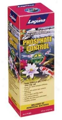 Laguna Phosphate Control