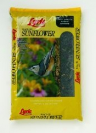 Lyric Black Oil Sunflower Bird Seed