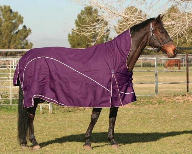 Madrid Mw Mid-neck Turnout Blanket