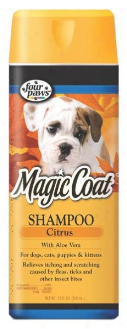 Magi cCoat Organic Citrus Shampoo For Cats And Dogs - 16 Ounce