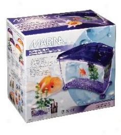 Sea-piece Goldfish Starter Kit