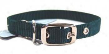 Nylon Dog Collar - Hunter Grn