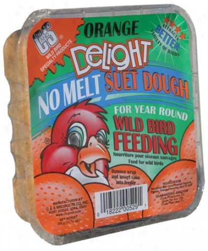 Orange Delight Suet - 11.75 Ounce