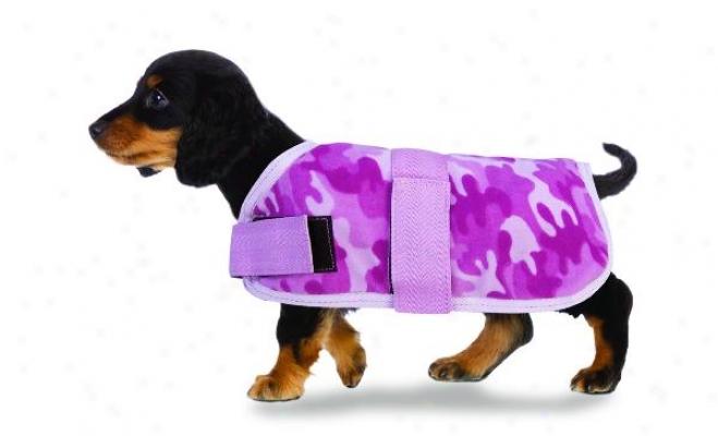 Ovation Novelty Printed Fleece Dog Blanket