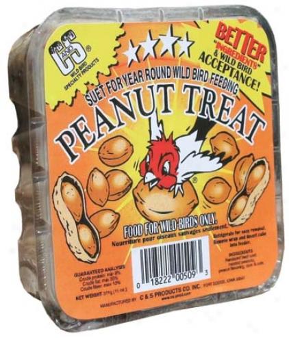 Peanut Suet Treat - 11 Ounce
