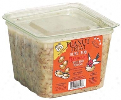 Peanut Treat Suet Food For Wildbirds - 32 Oz