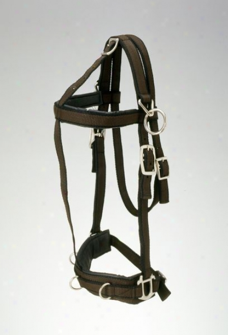 Performers 1st Choice Nylon Training Halter - Pony