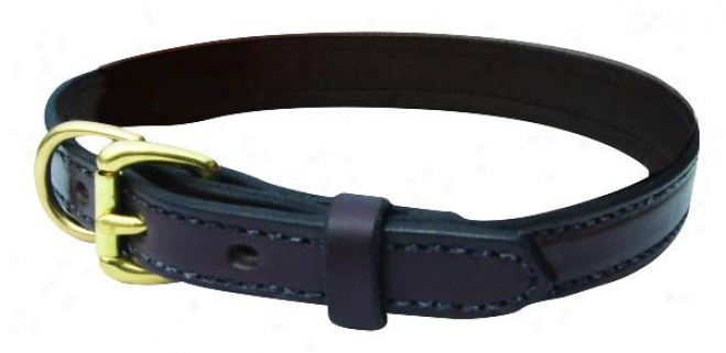 Perri's Leather Dog Collar