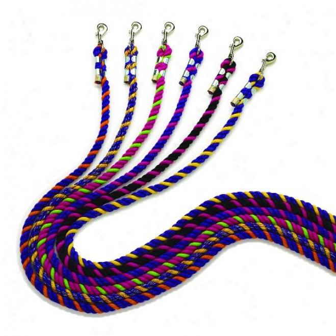 Perri's Neon Colored Lead - Assortment/6 - 6'