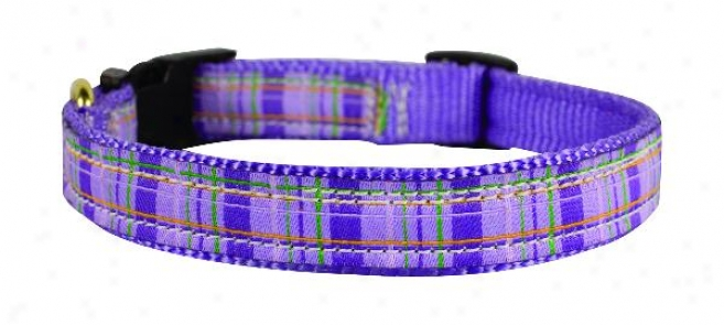 Perri's Ribbon Dog Collar