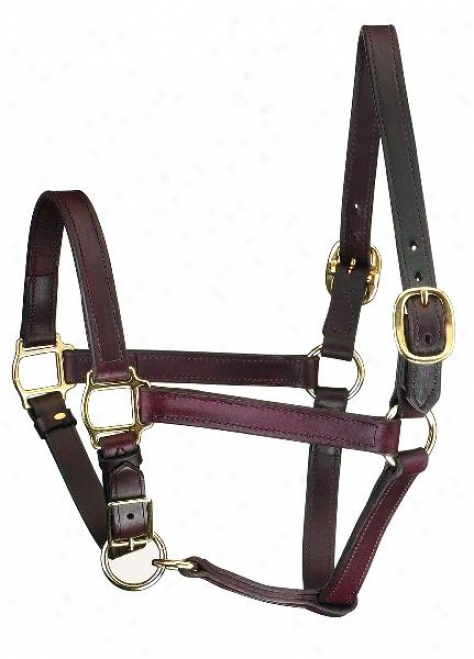 Perri's Track Denominate Leather Turnout Halter/adjustable Chin