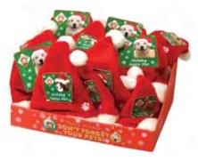 Pet Santa Hat Counter Diaplay - Red - 24 Piece
