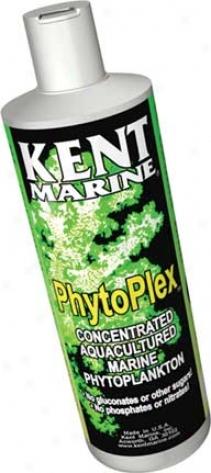 Phytoplex For Marine Aquariums - 8 Oz