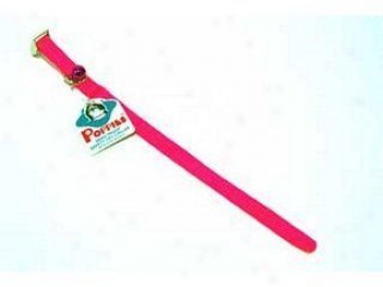Pps Safety Collar For Cats - Hot Pink