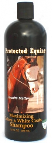 Protected Equine Max Color & Whitening Shampoo - 32 Oz