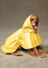 Puddles Raincoat - Yellow