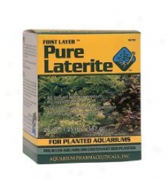 Pure Laterite - 20 Oz