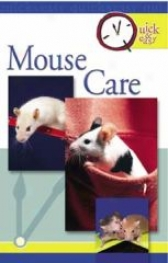 Quick And Easy Mouse Care Guidebook