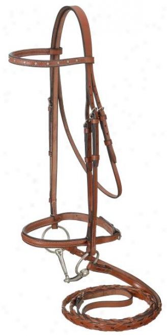 Raised Snaffle English Bridle With Spaced St0ne Crystals