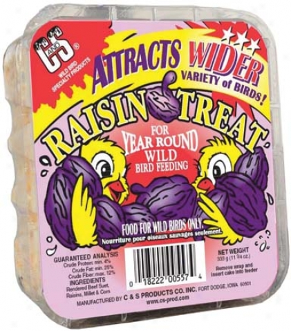 Raisin Suet Treat - 11.75 Ounce