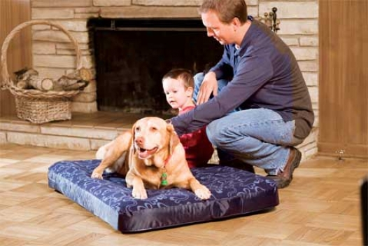 Rectangular Air Bed - Red - 40x52 Inch