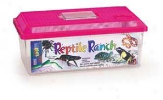 Reptile Ranch Aquarium