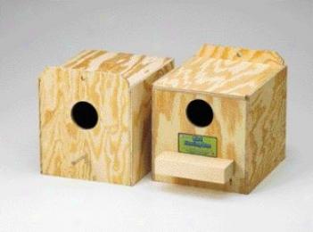 Reversed Parakeet Nest Box - Natural