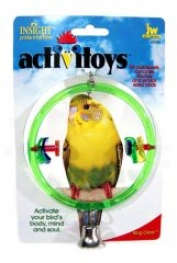 Ring Toy For Birds - Multicolor