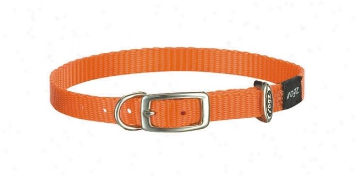 Rogz Bodego Buckle Collar - Orange - 1