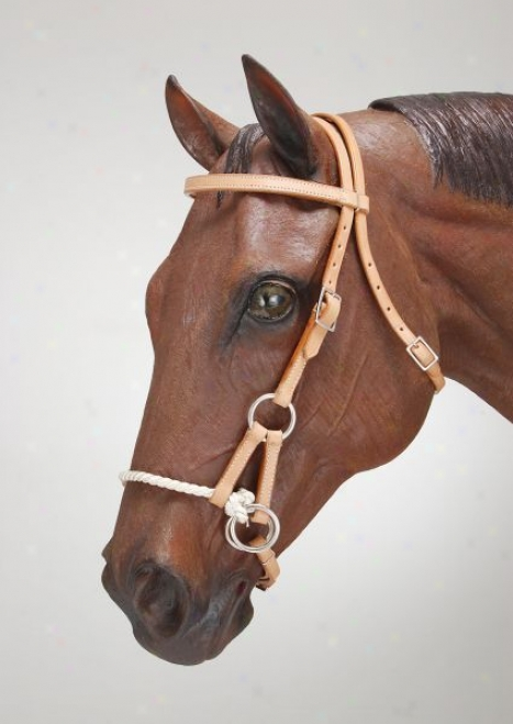 Royal King Browband Take ~s Pull