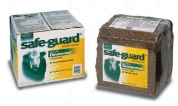 Safeguard Wormer Block - 25 Pound