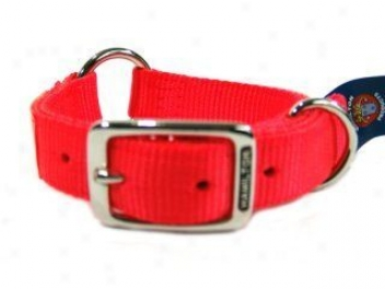 Saferite Collar For Dogs