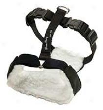 Safety Abode Vest Harness