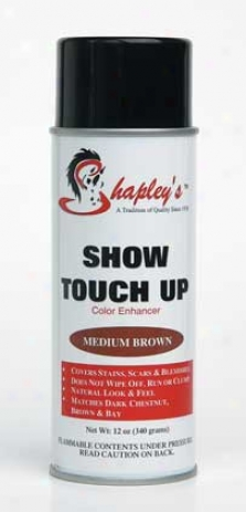 Show Touch Up - Brown - 12 Ounce