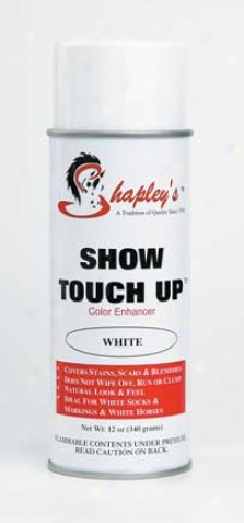 Show Touch Up - White - 12 Ounce