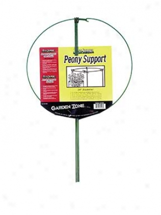 Single Peony Plant Support - Green - 14 Inch