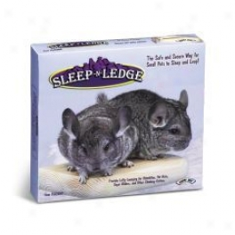 Sleep N Ledge For Chinillas/sugar Gliders/pet Rats - 7 X 6.25 X 1.25