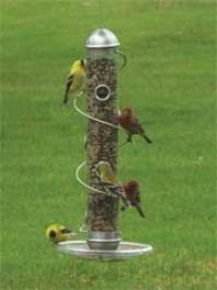 Spiral Seed Feeder For Wildbirds