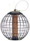 Squirrel Proof Cage Peanut Fdr - Black