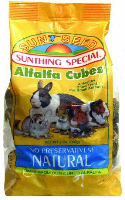 Sunseed Alfalfa Cubes - 2 Lbs
