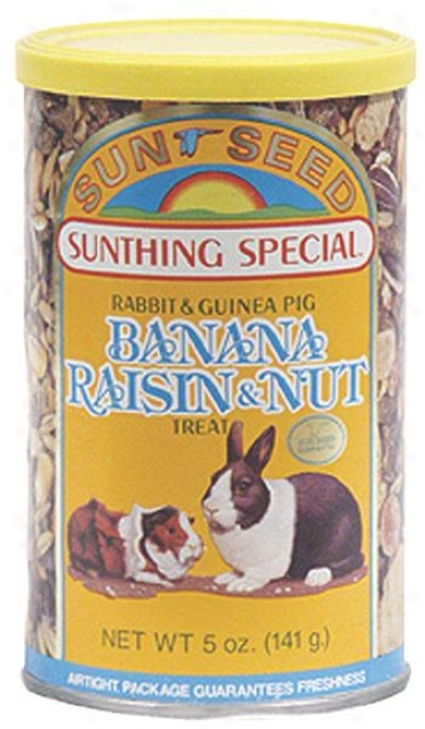 Sunseed Banana Raisin Nut Treat For Rabbits - 5 Oz
