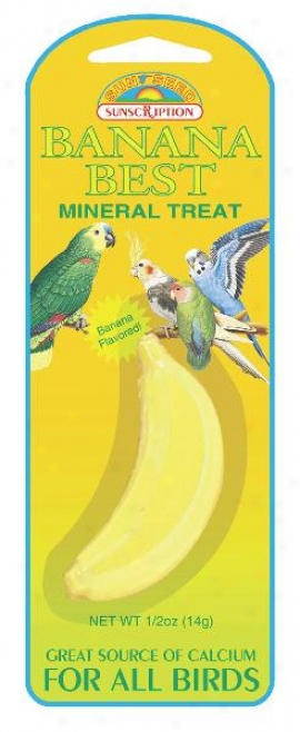 Sunseed Mineral Treat For Birds