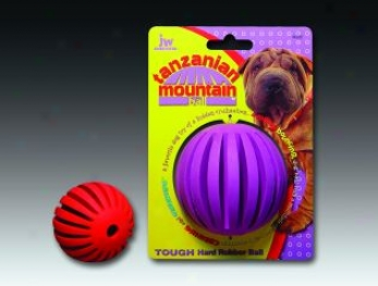 Tanzanian Mountain Globe Dog Trifle - Small