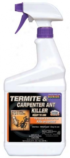 Termite & Carpenter Ant Killer - 1 Quart