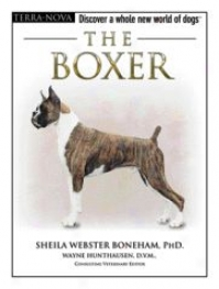 Terra Nova The Boxer Guidehook