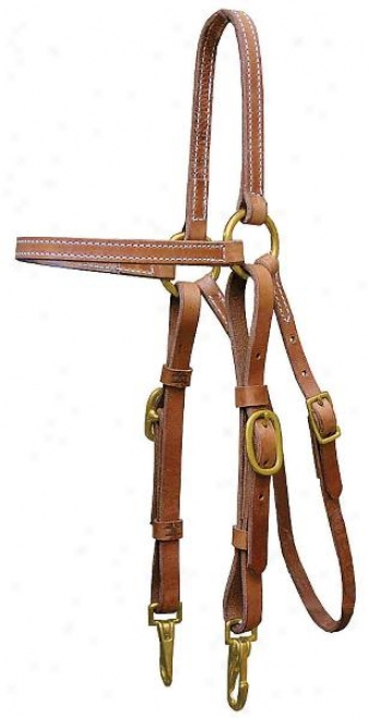 Tex Tan Training Headsall - Harness - Horse