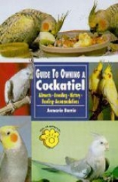 The Guide To Ownin A Cockatiel