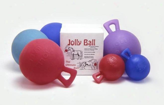 Tough-1 10 Jolly Ball With Handlw